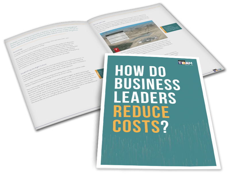 How-do-business-leaders-reduce-costs-White-Paper